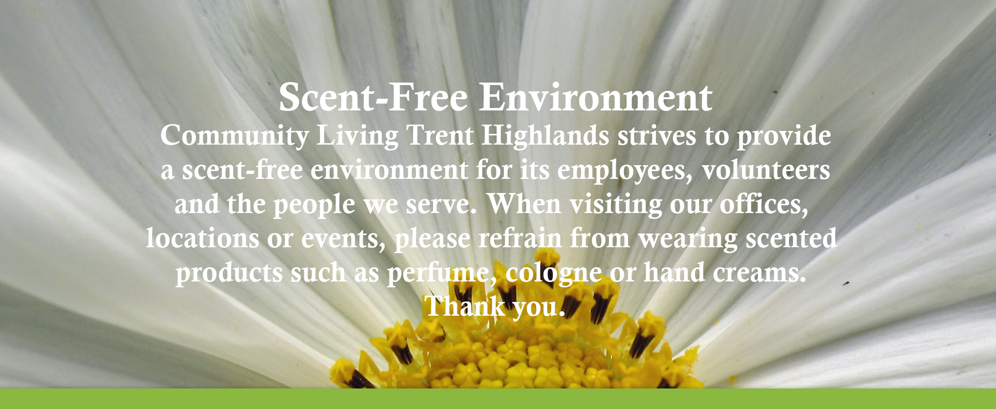 Scent-Free Environment